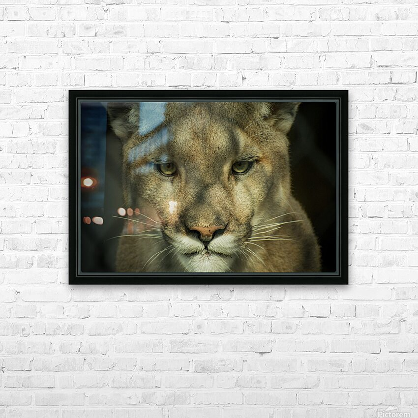 20181104 DSC 0032  3  HD Sublimation Metal print with Decorating Float Frame (BOX)
