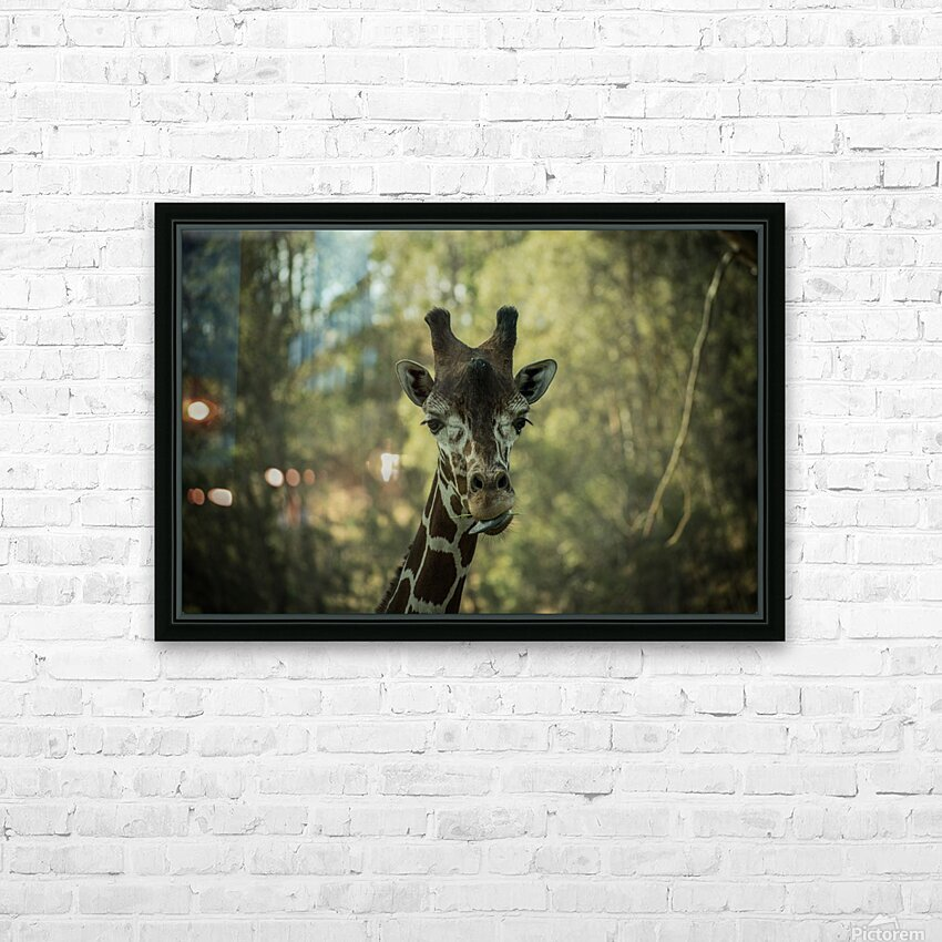 20181104 DSC 0164  3  HD Sublimation Metal print with Decorating Float Frame (BOX)