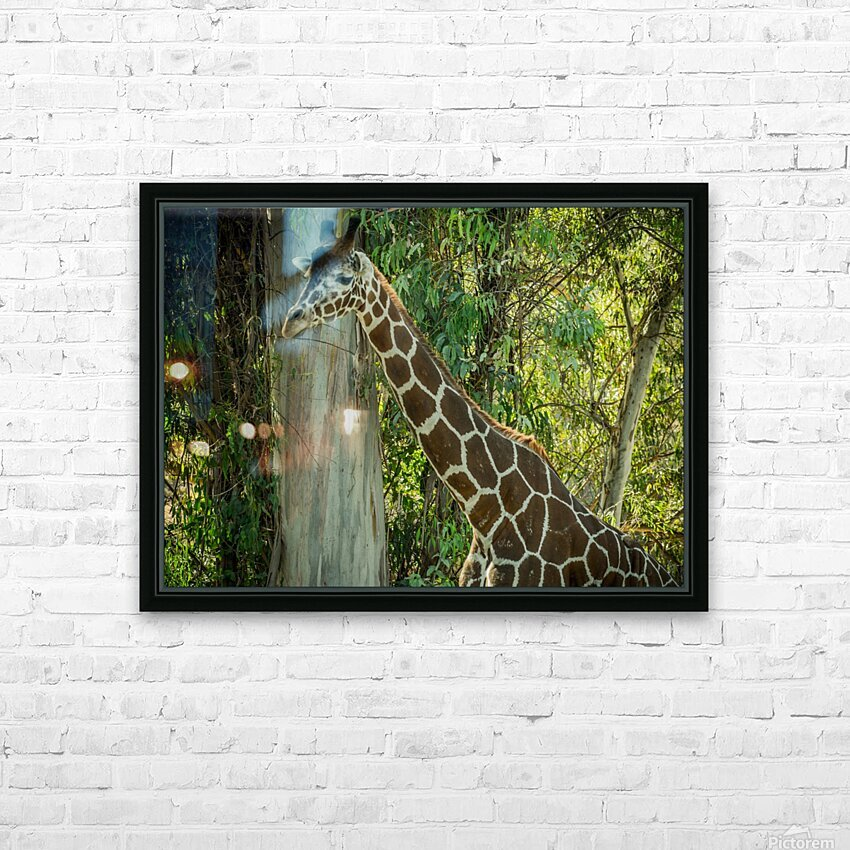 20181104 DSC 0203  3  HD Sublimation Metal print with Decorating Float Frame (BOX)