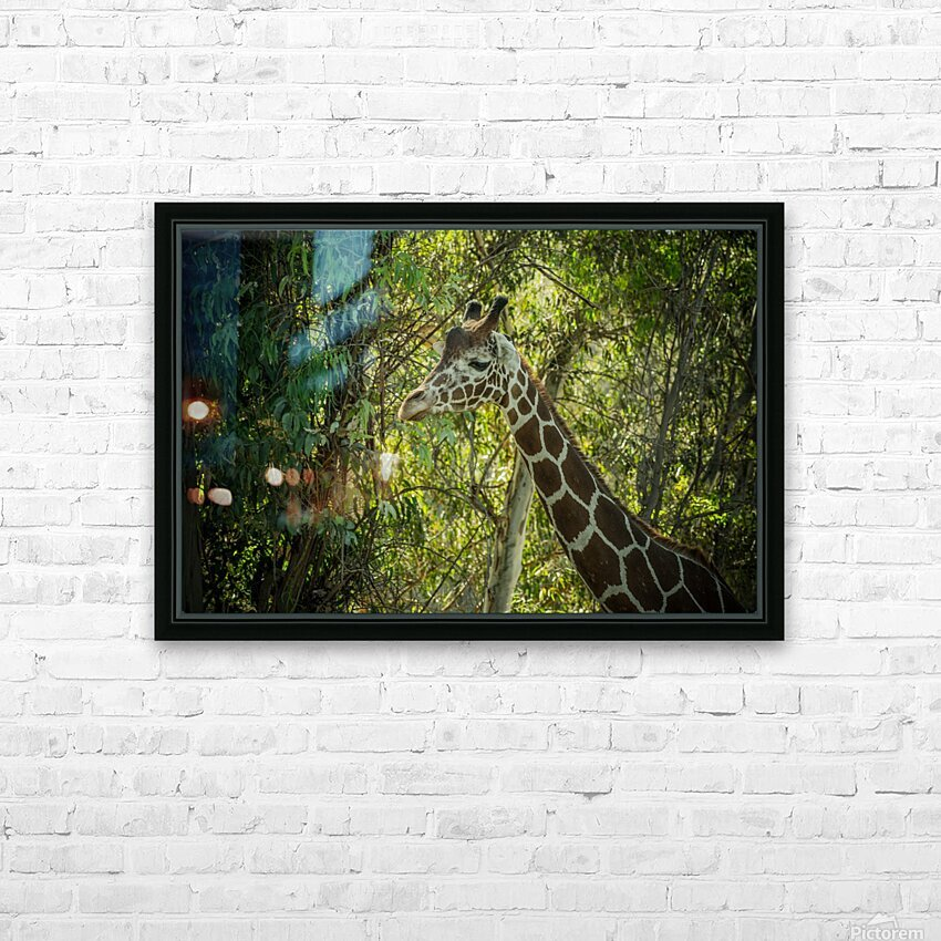 20181104 DSC 0202  3  HD Sublimation Metal print with Decorating Float Frame (BOX)