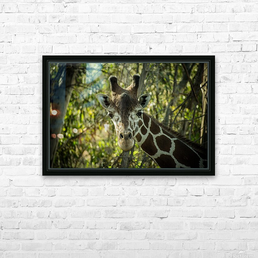 20181104 DSC 0191  3  HD Sublimation Metal print with Decorating Float Frame (BOX)