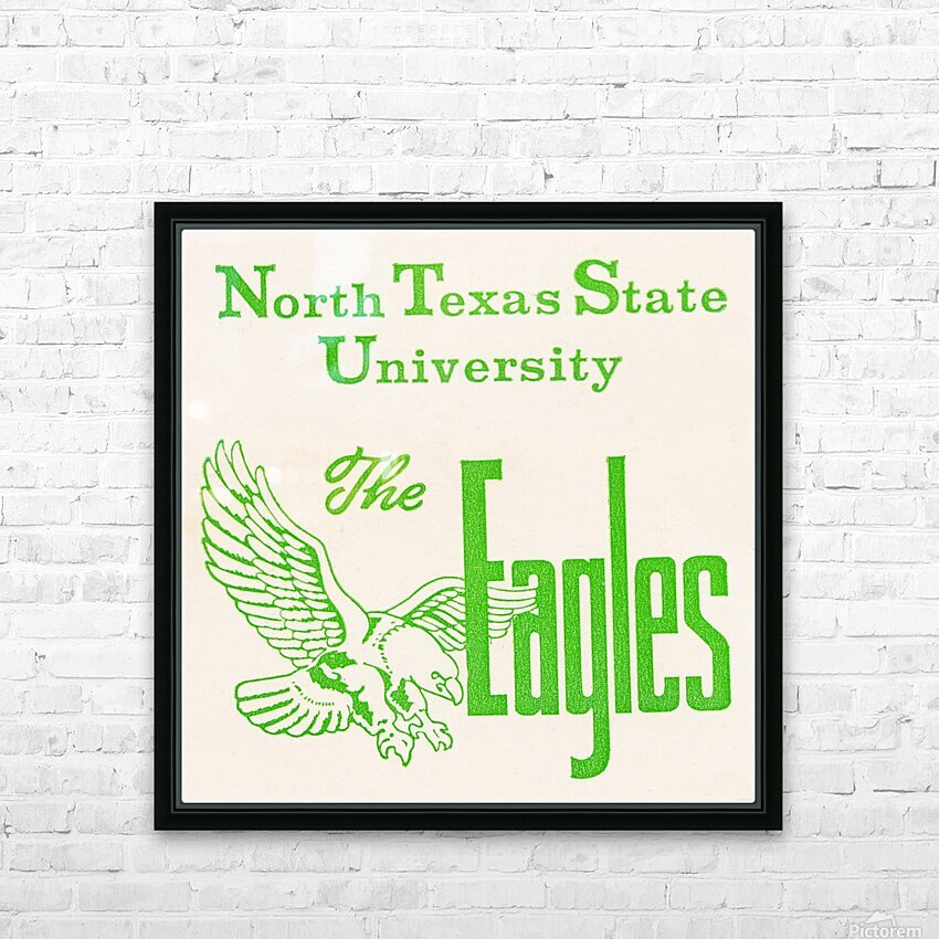 Vintage North Texas State University Eagles Art HD Sublimation Metal print with Decorating Float Frame (BOX)
