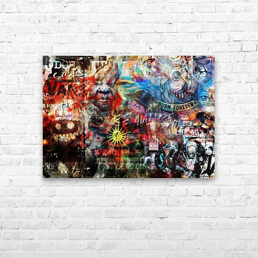 Street Art Reptilian   HD Sublimation Metal print with Decorating Float Frame (BOX)
