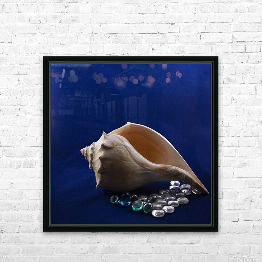 Single Conch Shell With Colored Glass  HD Sublimation Metal print with Decorating Float Frame (BOX)