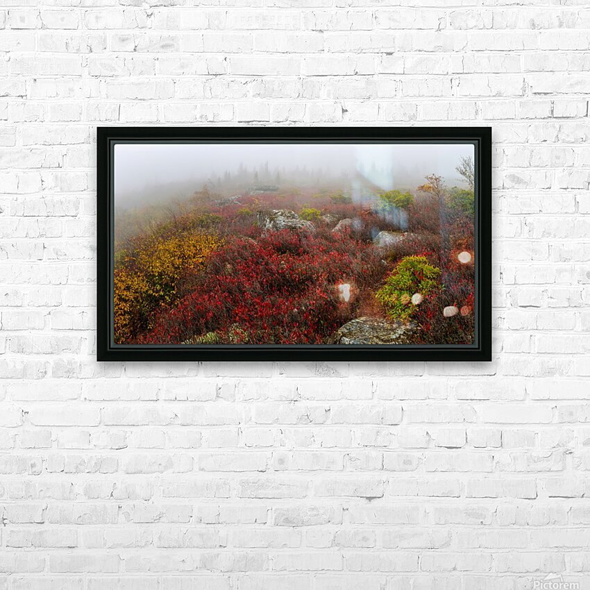Bear Rocks Preserve apmi 1803 HD Sublimation Metal print with Decorating Float Frame (BOX)