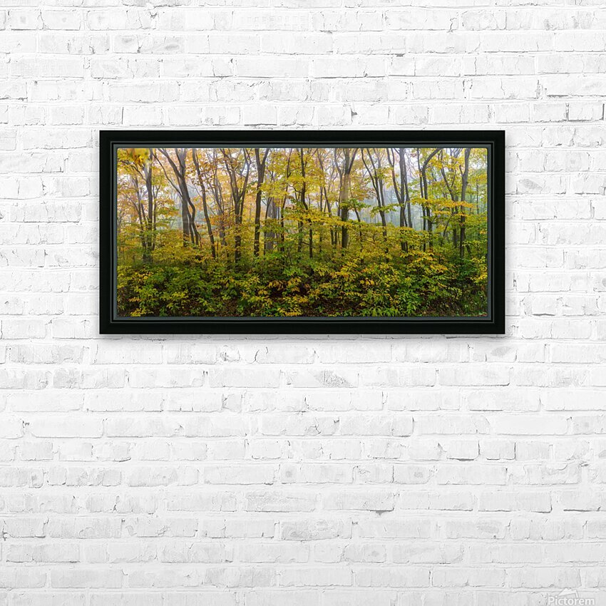 Colors of Nature apmi 1857 HD Sublimation Metal print with Decorating Float Frame (BOX)