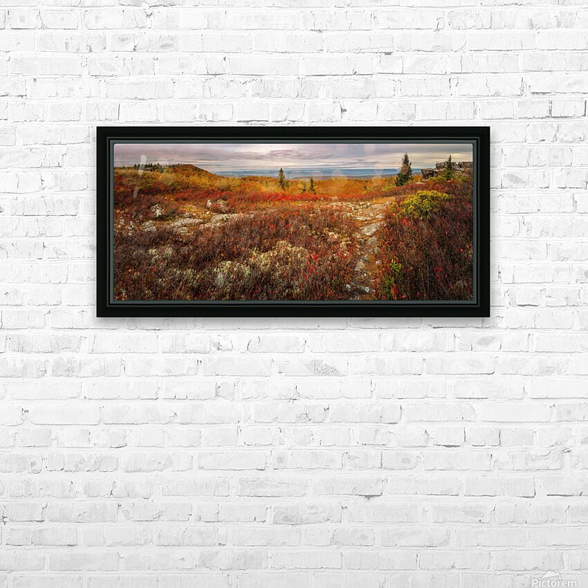 Colors of Nature apmi 1782AL HD Sublimation Metal print with Decorating Float Frame (BOX)