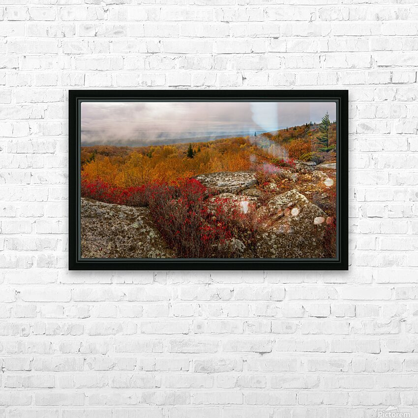 Colors of Nature apmi 1795 HD Sublimation Metal print with Decorating Float Frame (BOX)