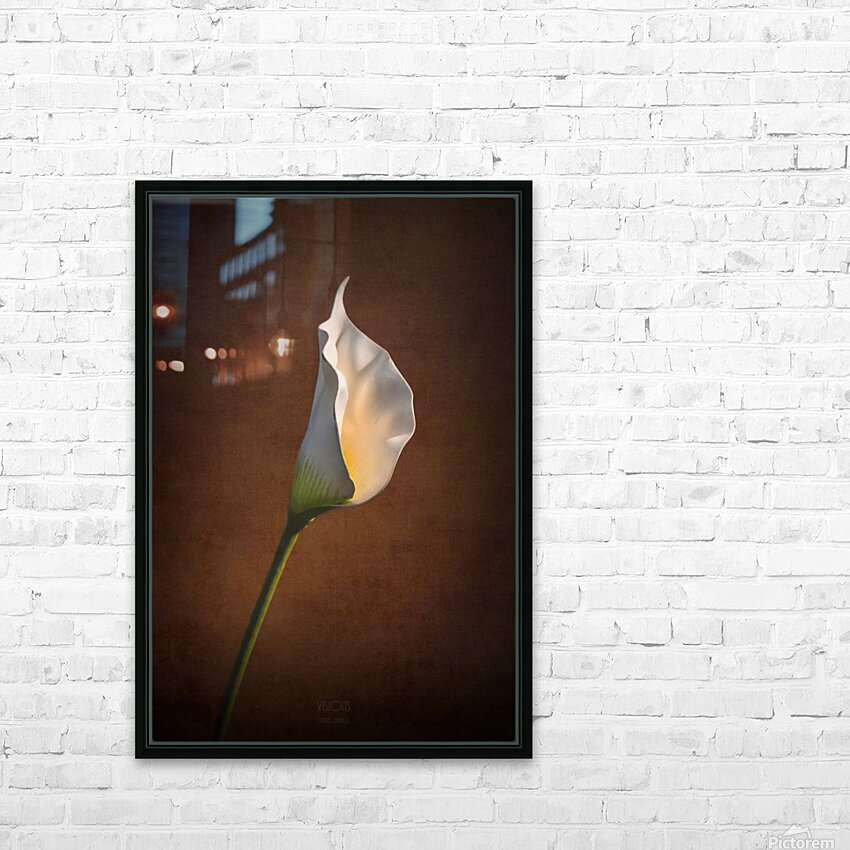 Etude Zen 7b HD Sublimation Metal print with Decorating Float Frame (BOX)