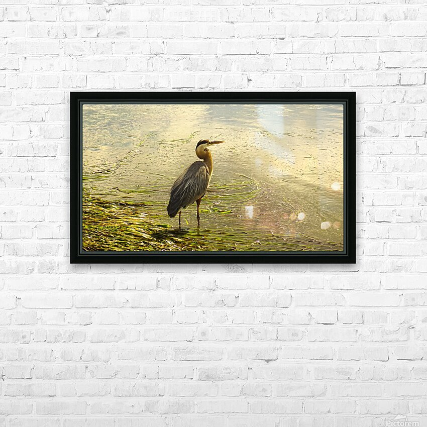 Blue Heron At the Estuary HD Sublimation Metal print with Decorating Float Frame (BOX)