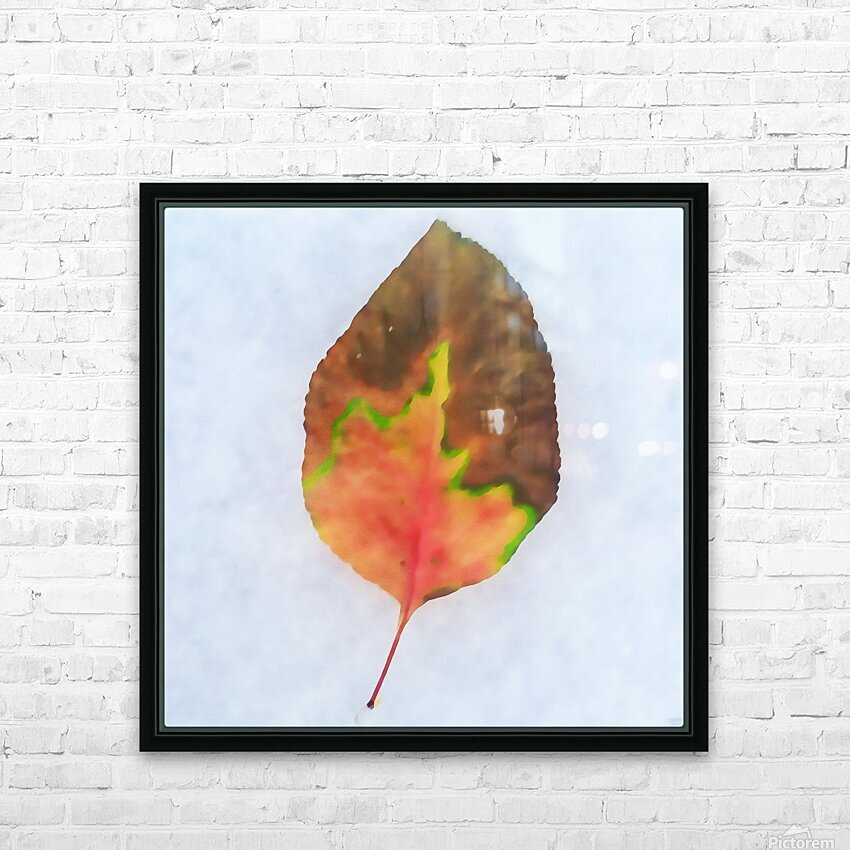snow leaf HD Sublimation Metal print with Decorating Float Frame (BOX)