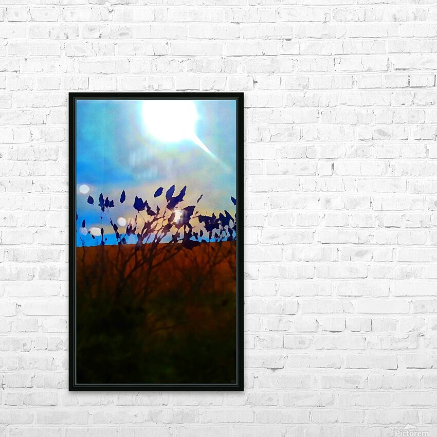 Mid Afternoon Beauty HD Sublimation Metal print with Decorating Float Frame (BOX)