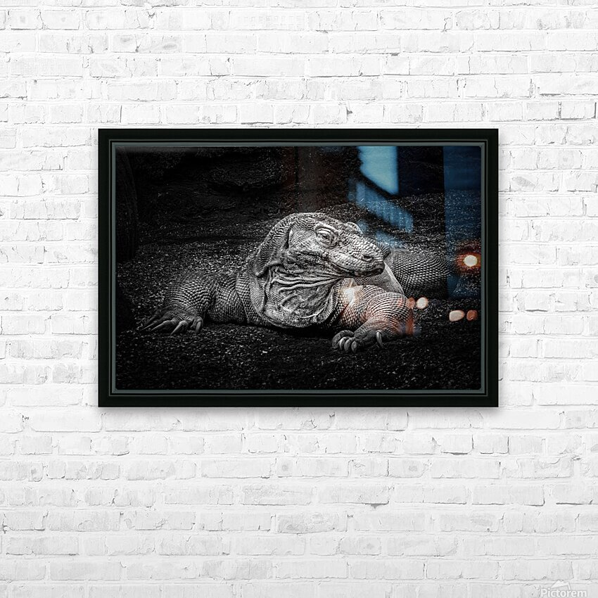 Komodo Dragon HD Sublimation Metal print with Decorating Float Frame (BOX)