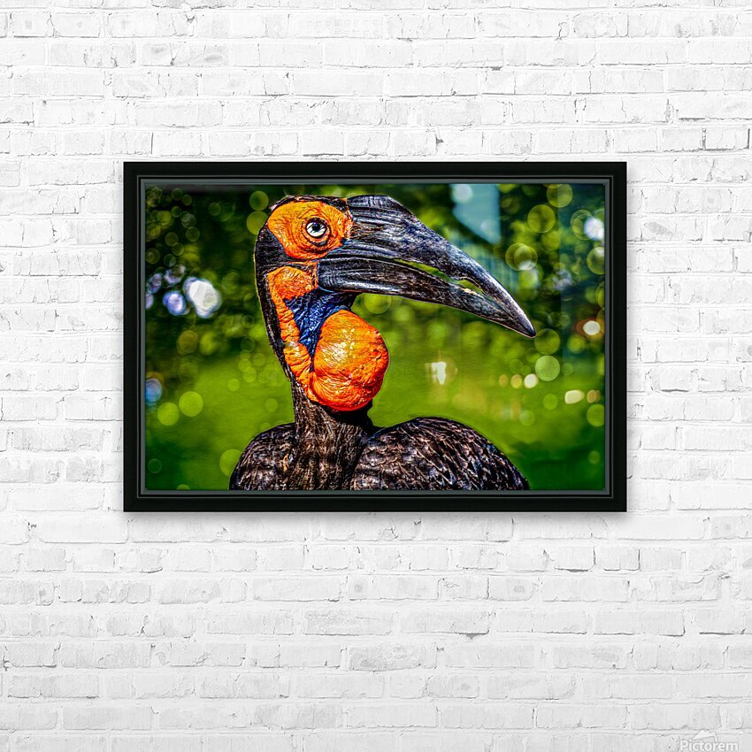 Ugly Bird HD Sublimation Metal print with Decorating Float Frame (BOX)
