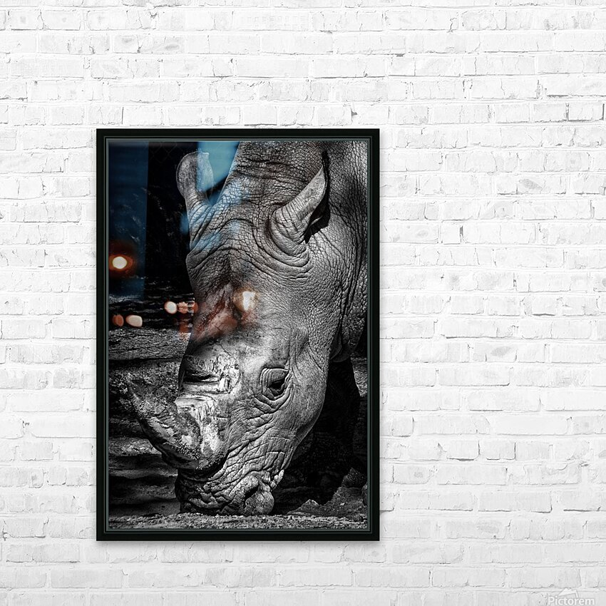 Rhinoceros HD Sublimation Metal print with Decorating Float Frame (BOX)