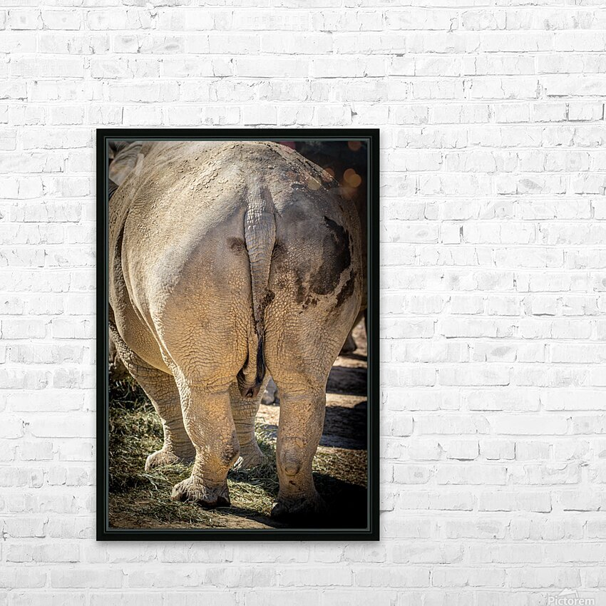 Rhinoceros 2 HD Sublimation Metal print with Decorating Float Frame (BOX)