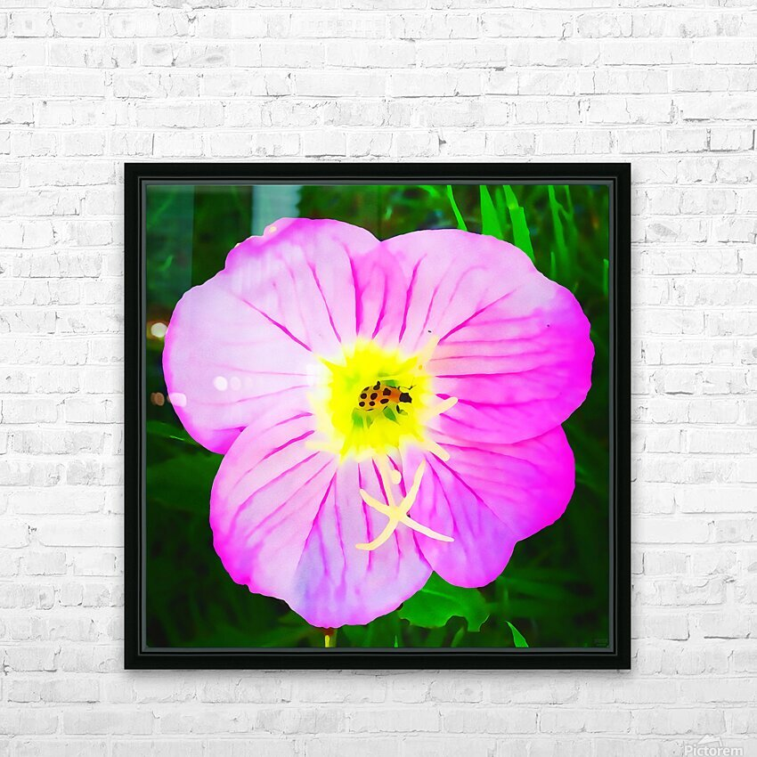 lady bug flower HD Sublimation Metal print with Decorating Float Frame (BOX)
