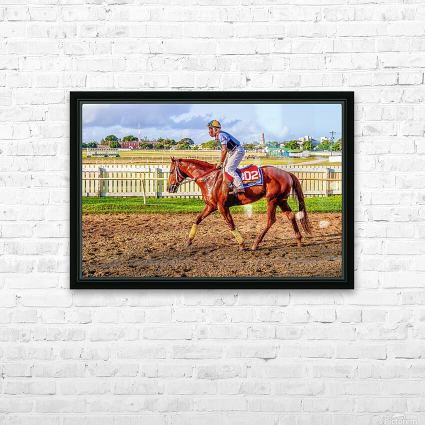 Racehorse05 HD Sublimation Metal print with Decorating Float Frame (BOX)