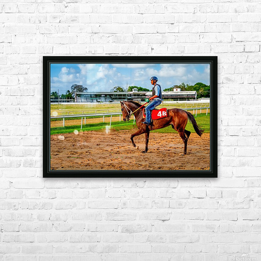 Racehorse04 HD Sublimation Metal print with Decorating Float Frame (BOX)
