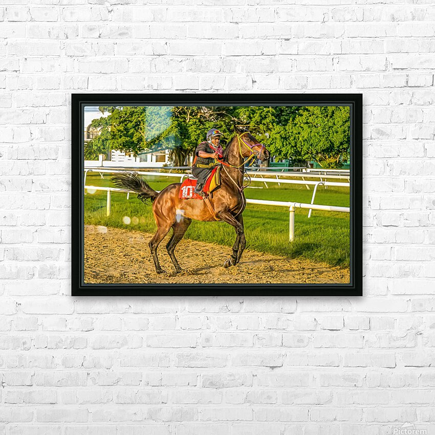 Racehorse12 HD Sublimation Metal print with Decorating Float Frame (BOX)