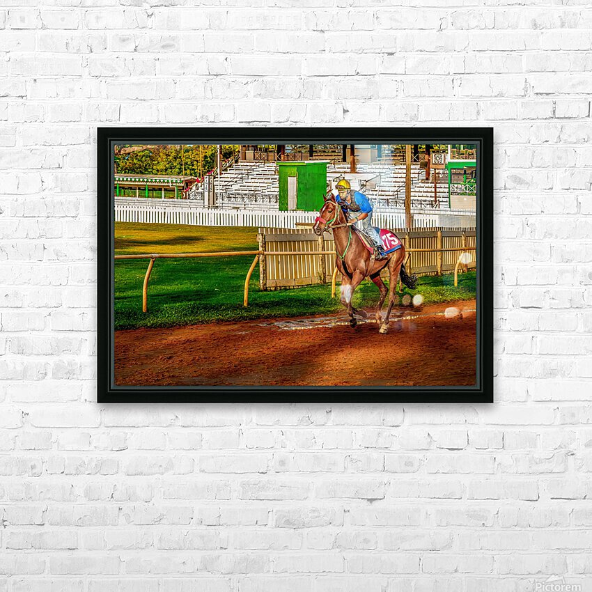 Racehorse02 HD Sublimation Metal print with Decorating Float Frame (BOX)