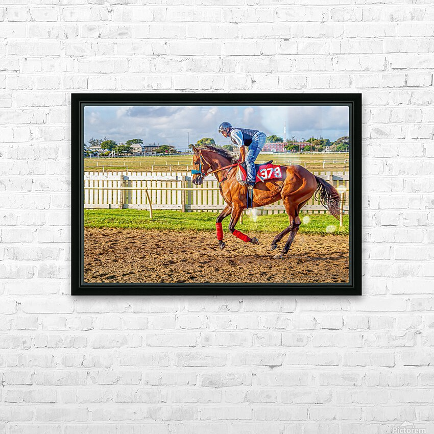 Racehorse06 HD Sublimation Metal print with Decorating Float Frame (BOX)