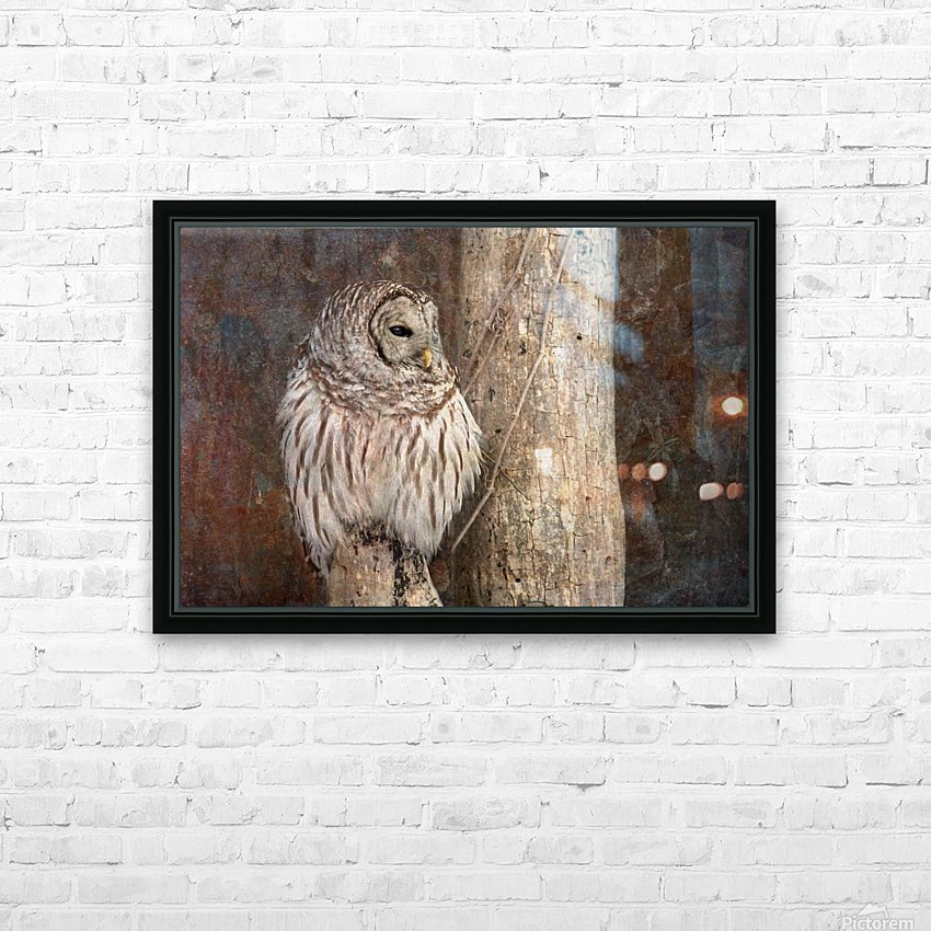 Barred Owl in Grunge HD Sublimation Metal print with Decorating Float Frame (BOX)