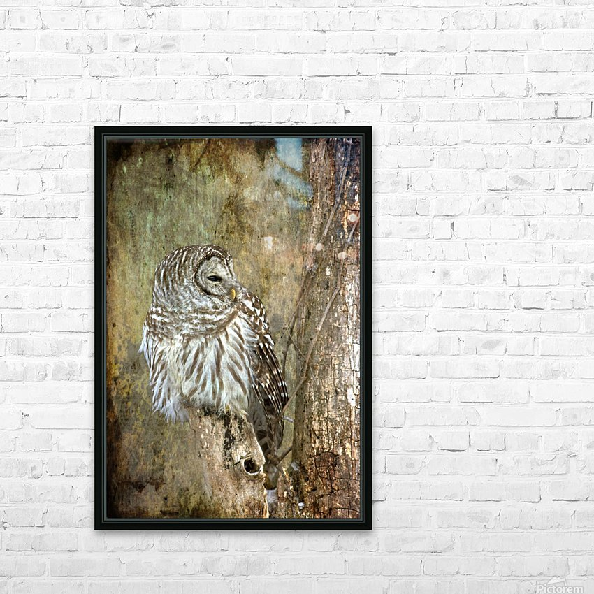 Grungy Owl HD Sublimation Metal print with Decorating Float Frame (BOX)