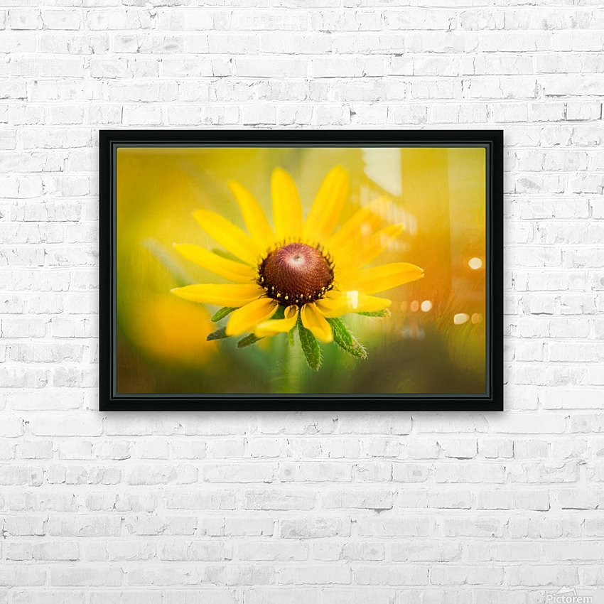 Brown Eyed Susan HD Sublimation Metal print with Decorating Float Frame (BOX)