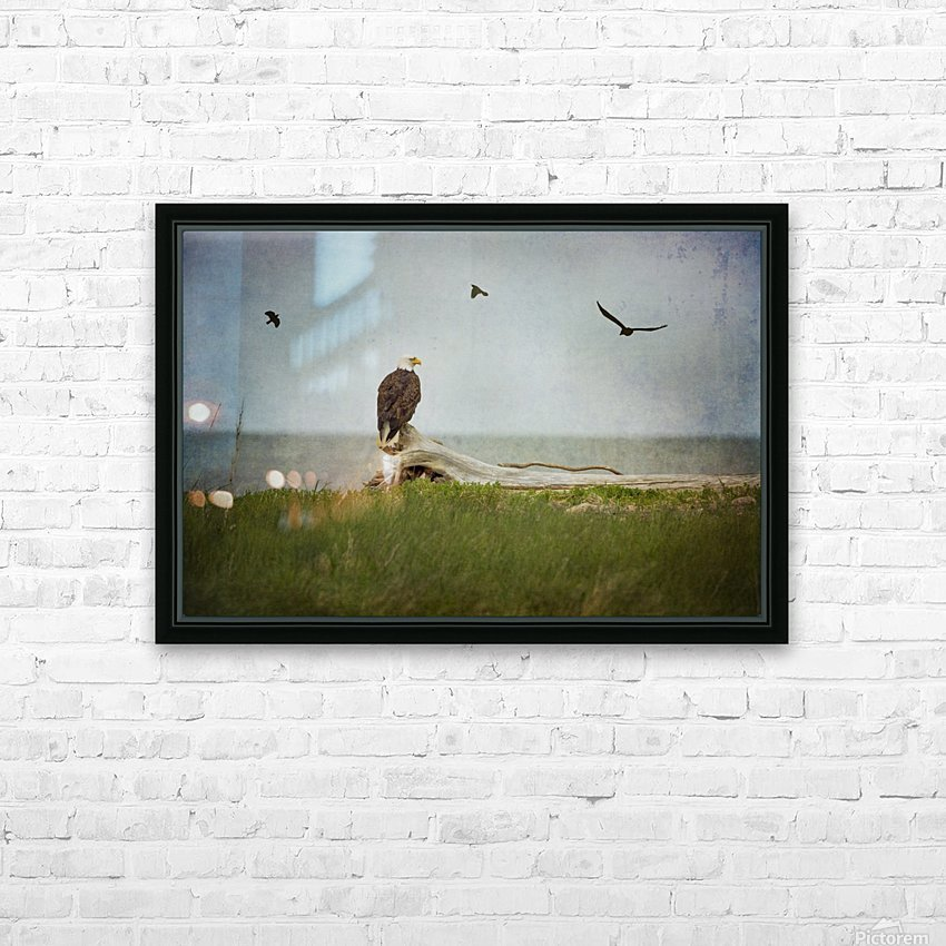 Bald Eagle on Tree Trunk HD Sublimation Metal print with Decorating Float Frame (BOX)
