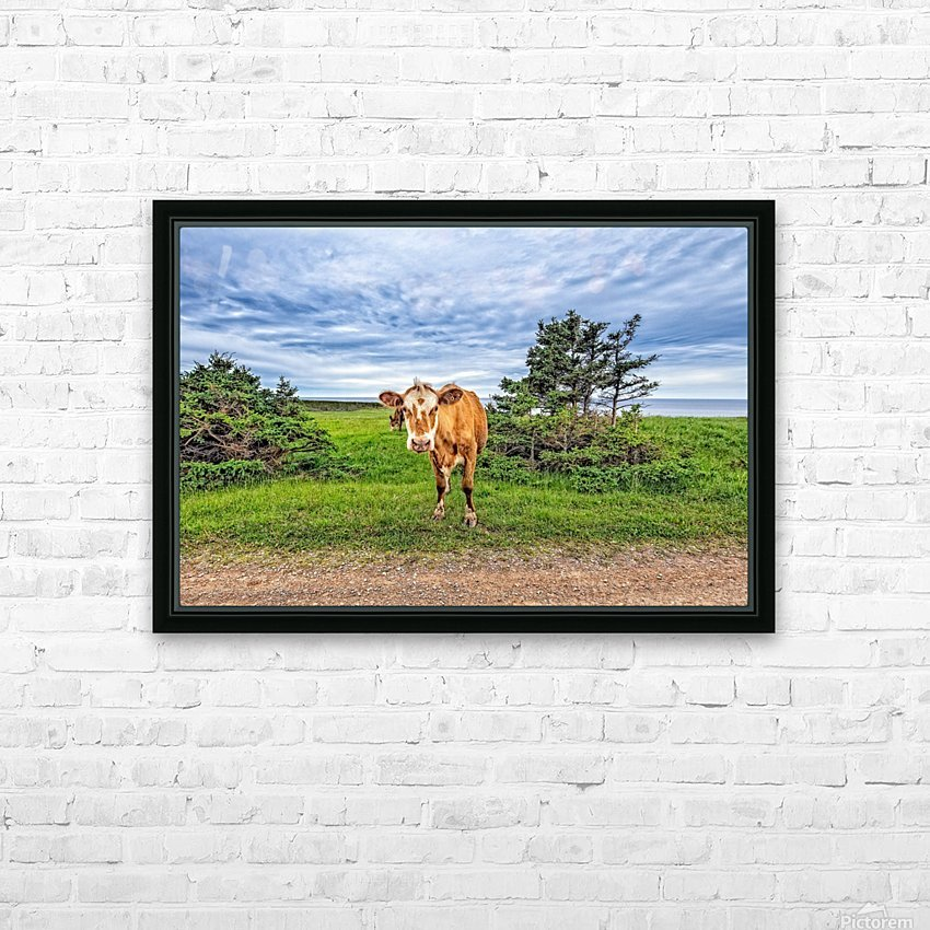 Moo HD Sublimation Metal print with Decorating Float Frame (BOX)