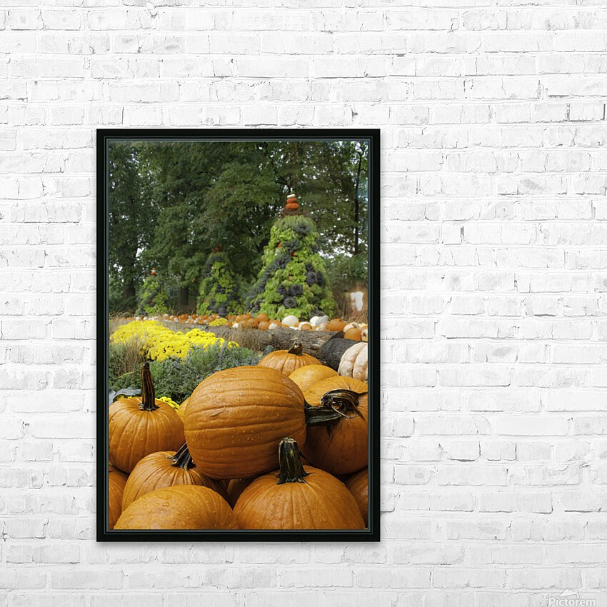Pumpkins HD Sublimation Metal print with Decorating Float Frame (BOX)