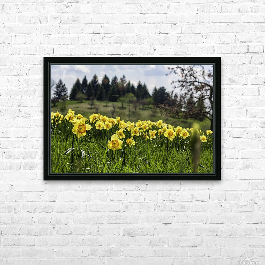 Flowers on the Hills HD Sublimation Metal print with Decorating Float Frame (BOX)