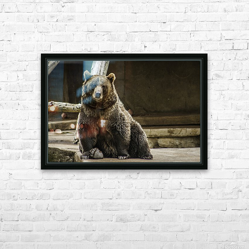 Greetings  Brown Bear  HD Sublimation Metal print with Decorating Float Frame (BOX)