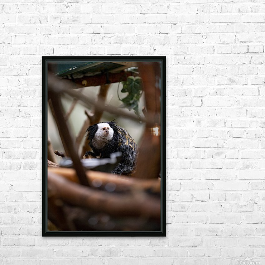 Through The Trees  Marmoset  HD Sublimation Metal print with Decorating Float Frame (BOX)