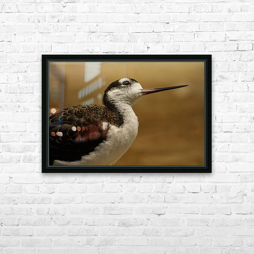 Shine Little Bird  Stilt  HD Sublimation Metal print with Decorating Float Frame (BOX)