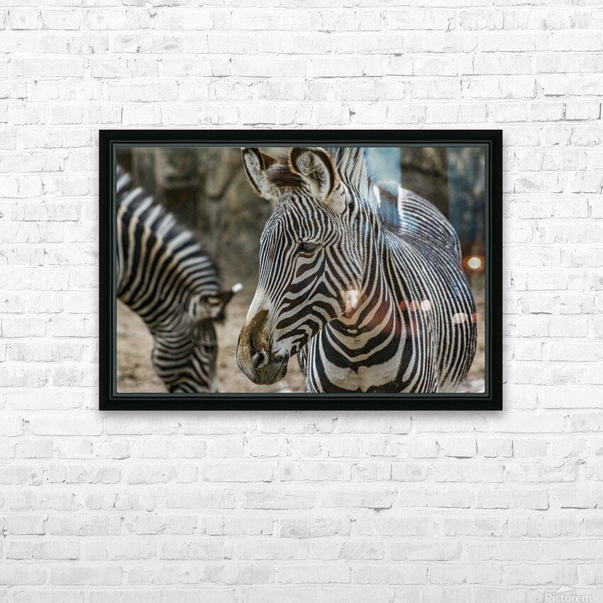 Stripes  Zebra  HD Sublimation Metal print with Decorating Float Frame (BOX)