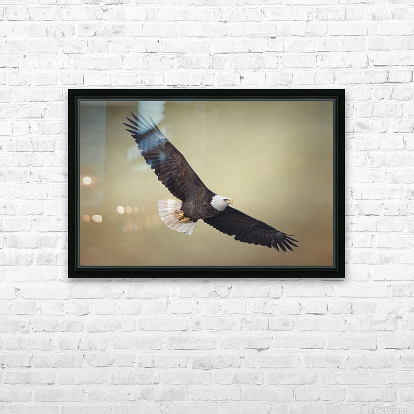 King of the Skies HD Sublimation Metal print with Decorating Float Frame (BOX)