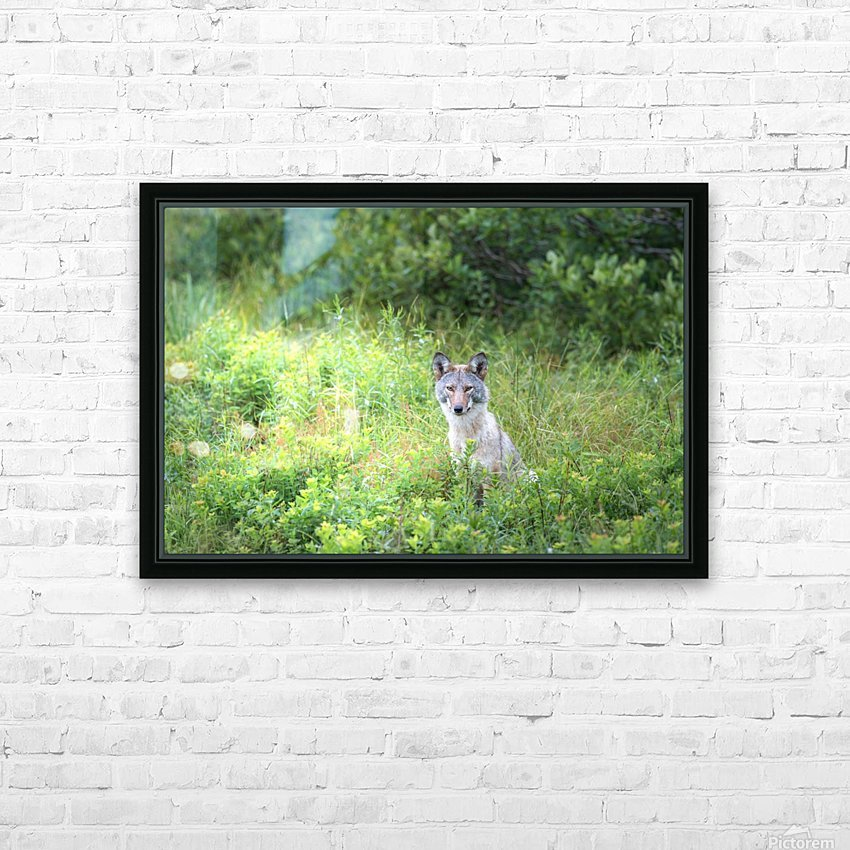 Sitting Pretty HD Sublimation Metal print with Decorating Float Frame (BOX)
