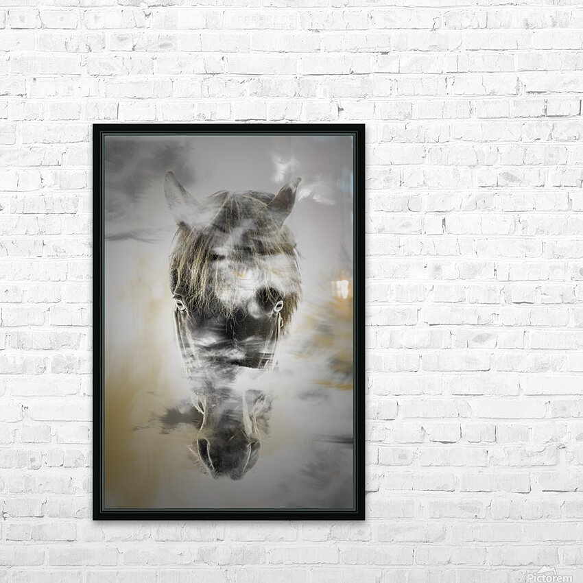 Cheval HD Sublimation Metal print with Decorating Float Frame (BOX)