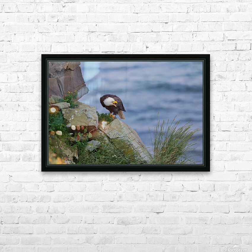 Dont Bug Me HD Sublimation Metal print with Decorating Float Frame (BOX)