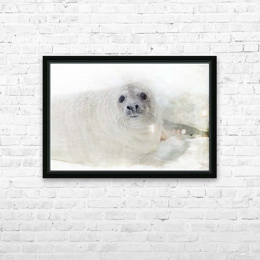 Whiskers HD Sublimation Metal print with Decorating Float Frame (BOX)