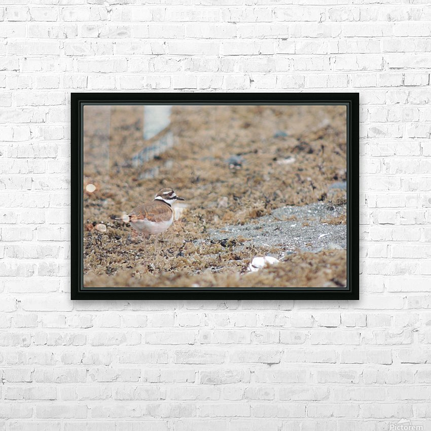 Killdeer Camouflage HD Sublimation Metal print with Decorating Float Frame (BOX)
