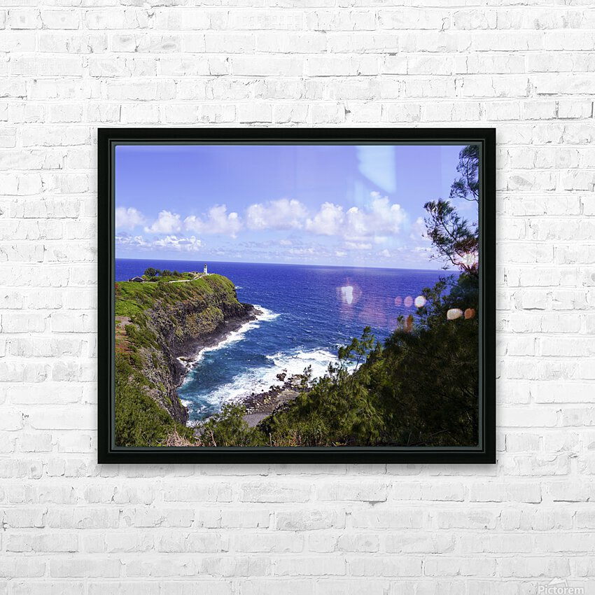 Spring at Kilauea Lighthouse on the Island of Kauai HD Sublimation Metal print with Decorating Float Frame (BOX)