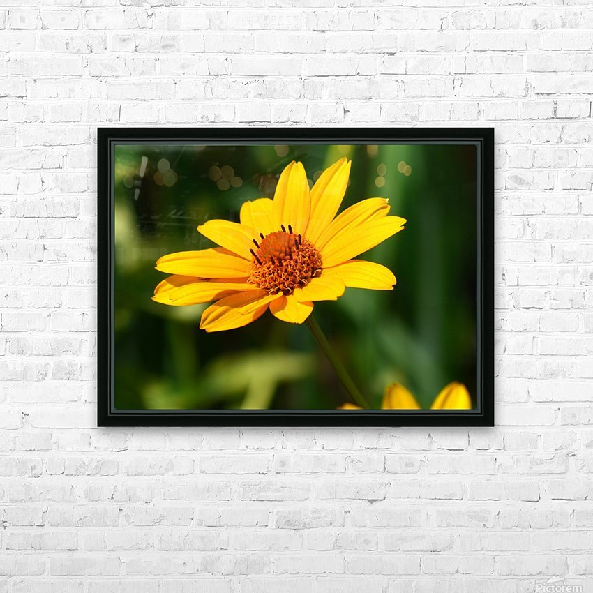 Sunny Side HD Sublimation Metal print with Decorating Float Frame (BOX)