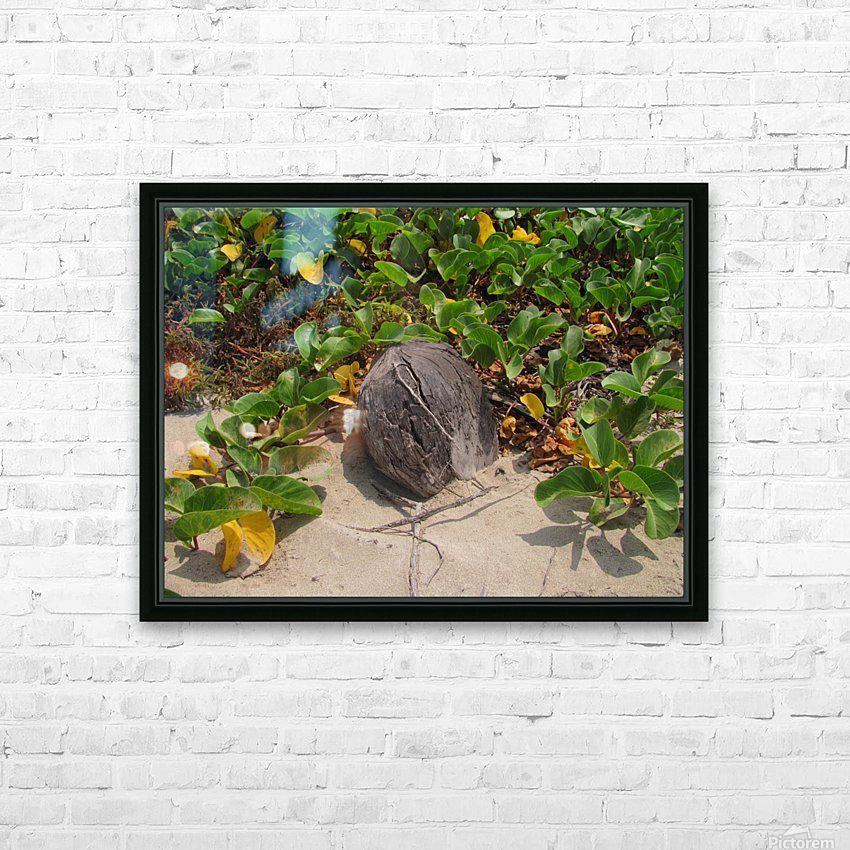 Coconut in the Sand HD Sublimation Metal print with Decorating Float Frame (BOX)
