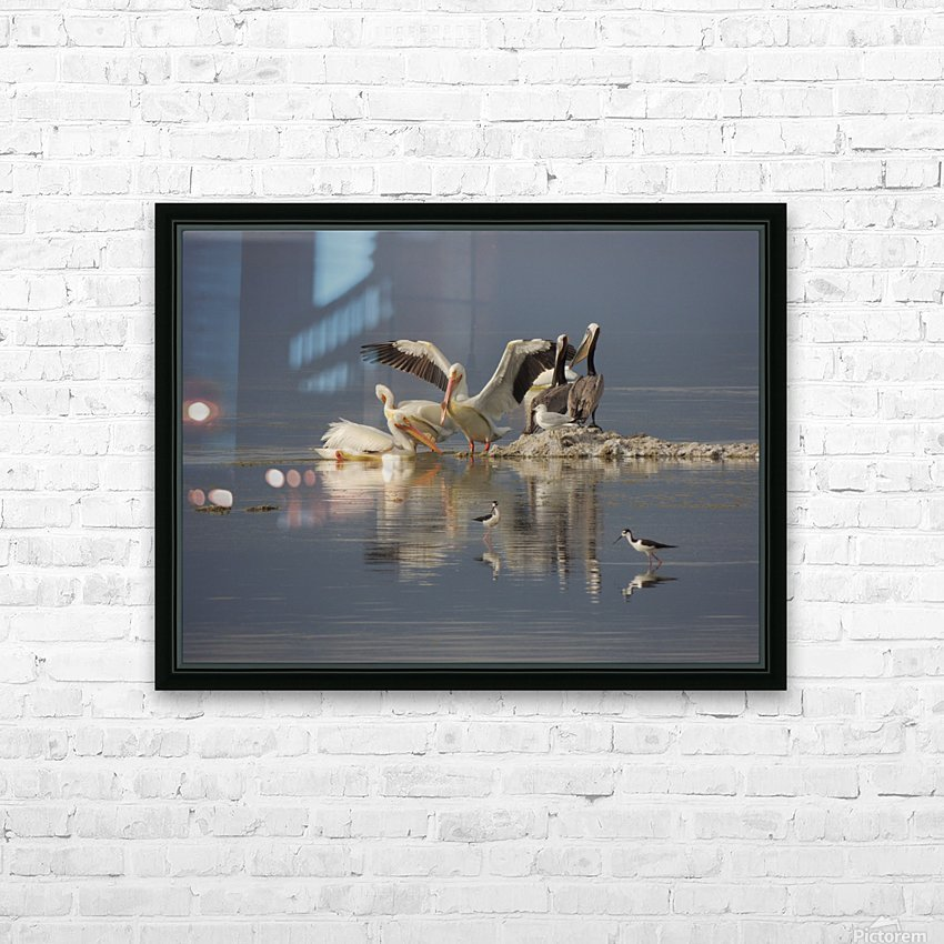 Pelican Reflections HD Sublimation Metal print with Decorating Float Frame (BOX)