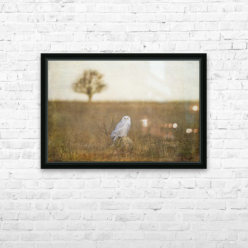 Snowy on a Rock HD Sublimation Metal print with Decorating Float Frame (BOX)