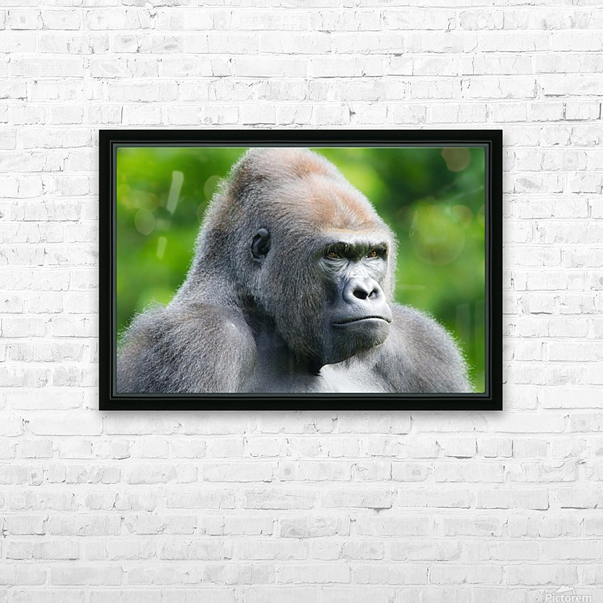 Gorilla HD Sublimation Metal print with Decorating Float Frame (BOX)