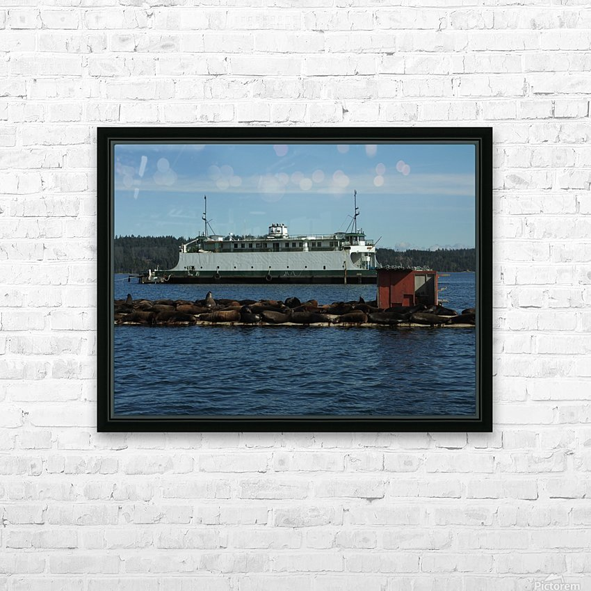 Baynes Sound HD Sublimation Metal print with Decorating Float Frame (BOX)